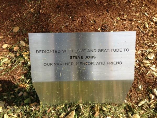 Pixar-Tree-Plaque dedicated to steve jobs